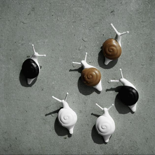 QUALY 小蝸牛磁鐵 5