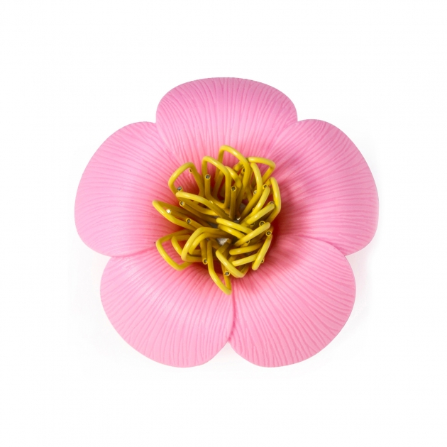 QUALY 山茶花-迴紋針組 (6色) 5