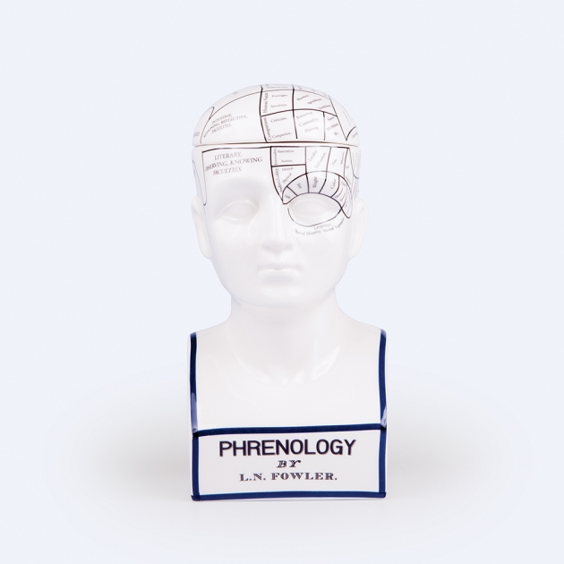 DOIY 大腦思考家-收納盒 2