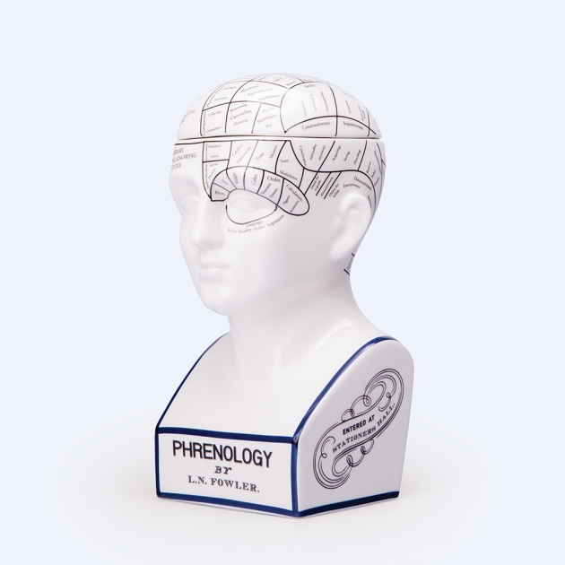 DOIY 大腦思考家-收納盒 1