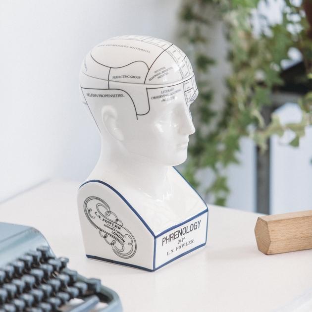 DOIY 大腦思考家-收納盒 6