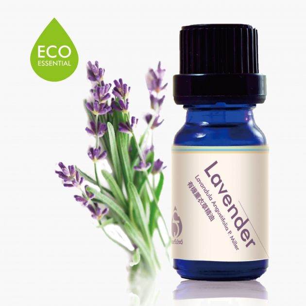 Lavender Essential Oil 1