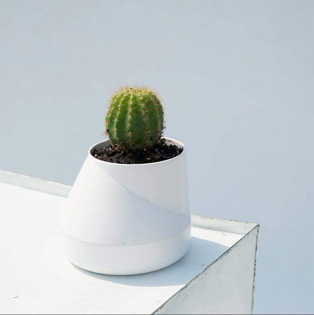 QUALY Hill Pot-山丘-花器S (4色) 1