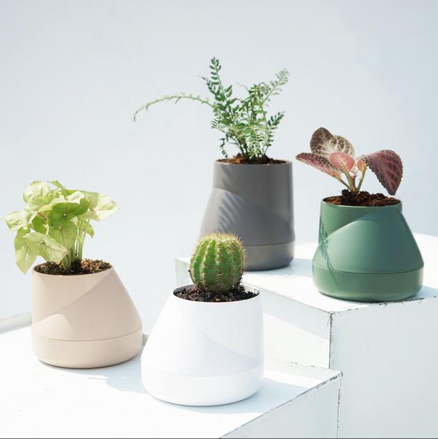 QUALY Hill Pot-山丘-花器S (4色) 5